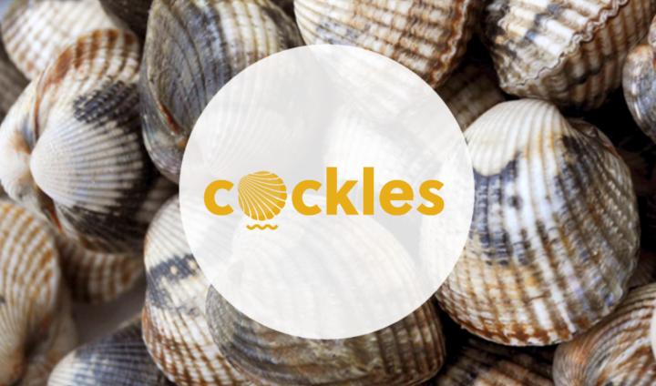 Visita proyecto Cockles